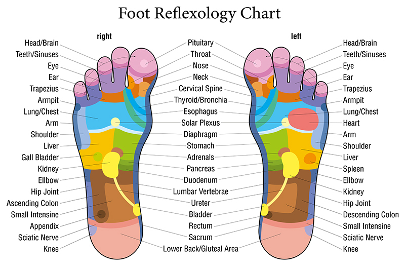 Outcall Foot Reflexology Service